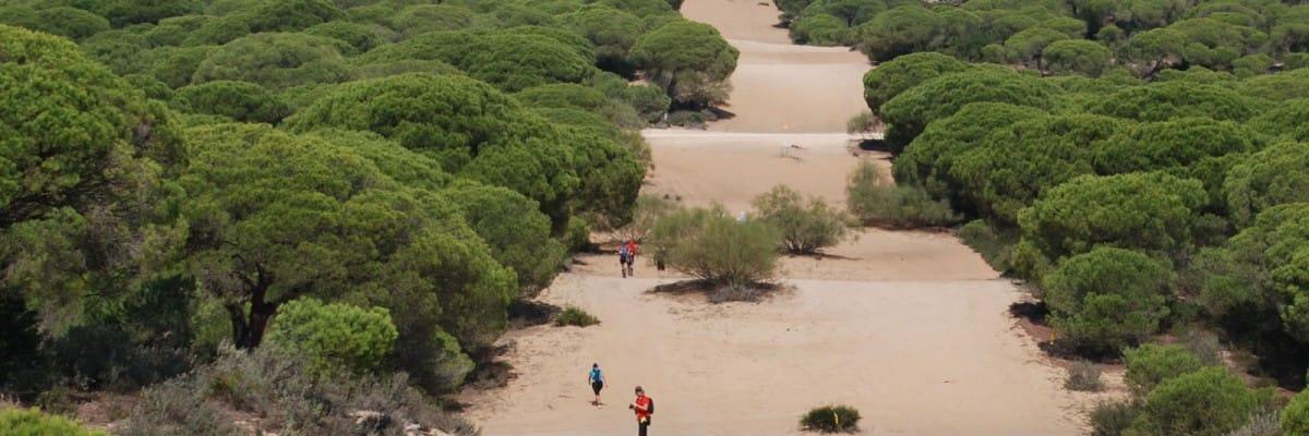 Visitas al Parque Natural de la Breña y Marismas del Barbate
